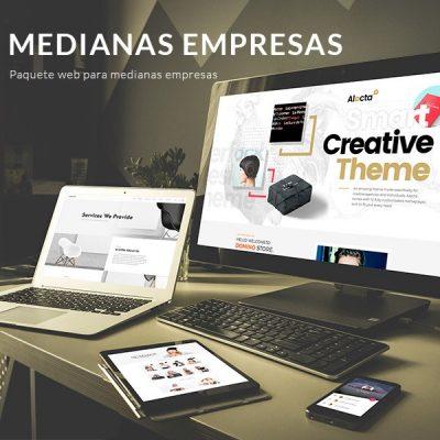 Páginas web para medianas empresas - Pispos diseño de páginas web en Cali